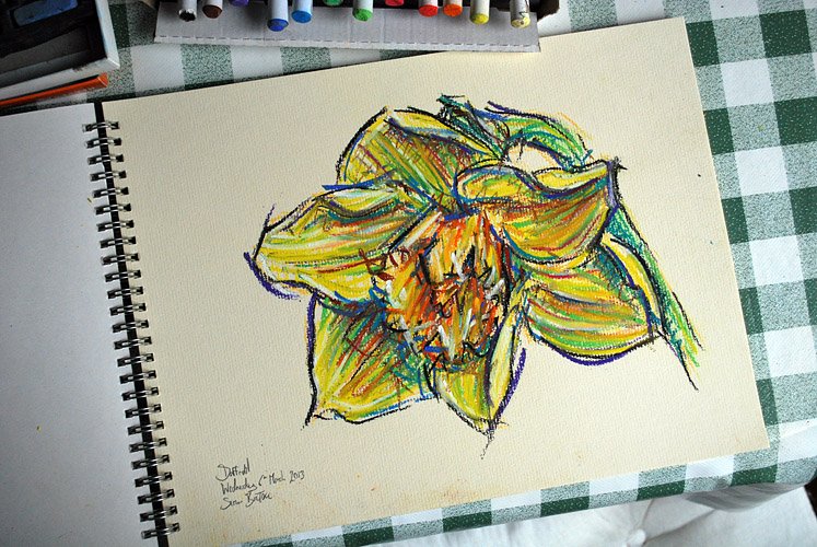 Drawing of a daffodil