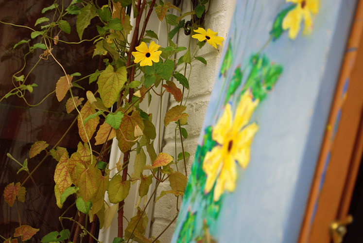 Painting a Black Eyed Susan