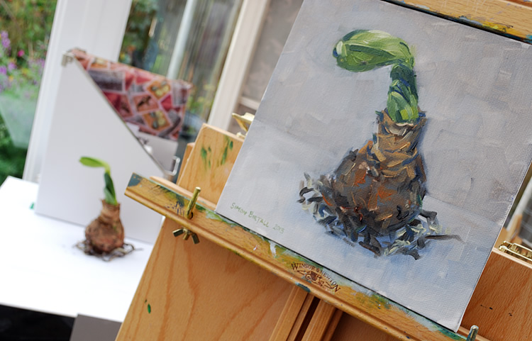 Painting an amaryllis bulb in oils