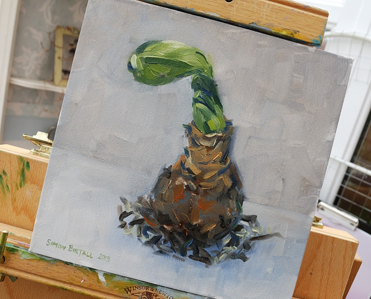 Painting of an amaryllis bulb